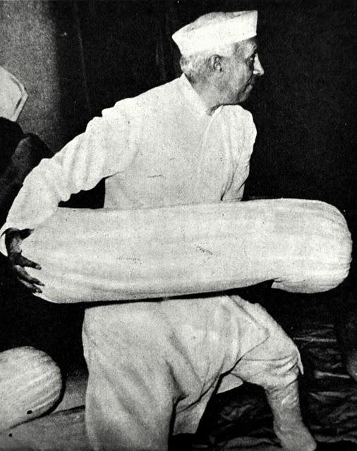 Pillow fighter Jawaharlal Nehru in 1955