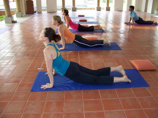 Shreyas Yoga Centre