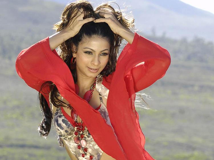 Bollywood Actress Tanisha Mukherjee Photos