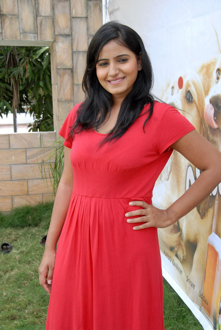 Tanusha Hot Photos At Amma Nanna Oorelithe Movie Press Meet