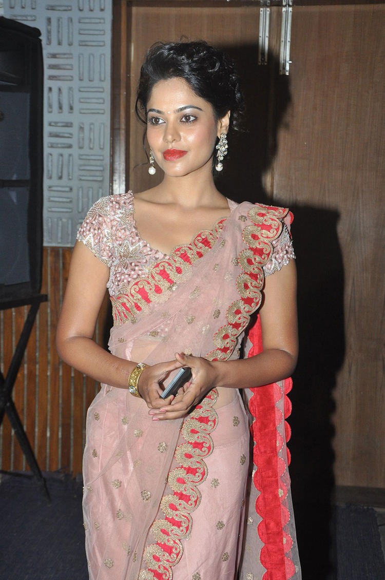 Bindu Madhavi Sizzling Pic In Netted Saree At Desingu Raja Press Meet