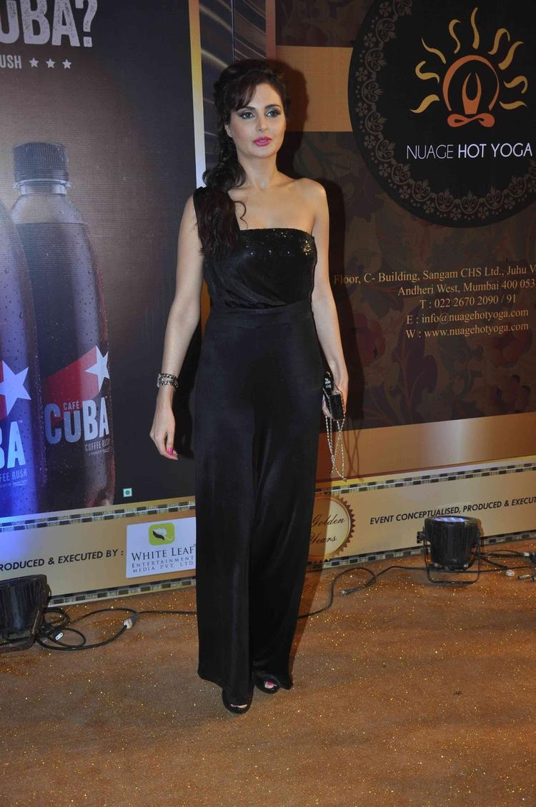 Monica Bedi In Black Hot Gown At The Boroplus Gold Awards 2013, John