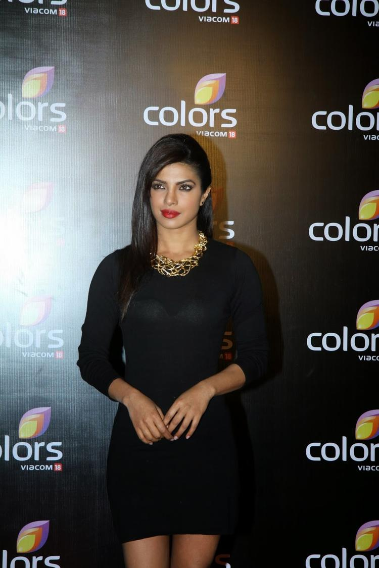Priyanka Chopra Stunning Gorgeous Look Pose At Colors Anniversary Bash 2014