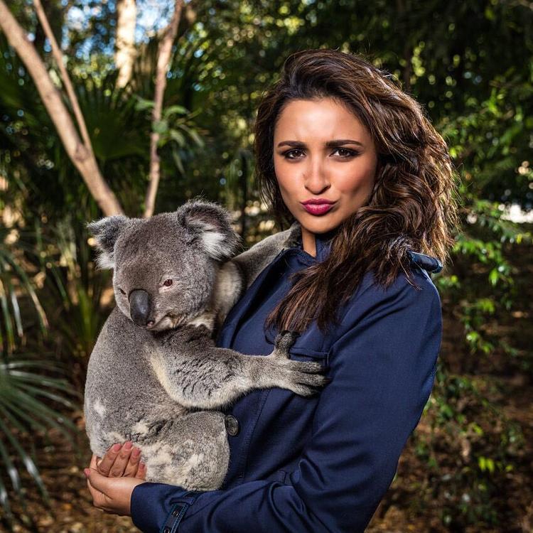 Parineeti Chopra cuddles a koala in Australia, gets trolled on Instagram