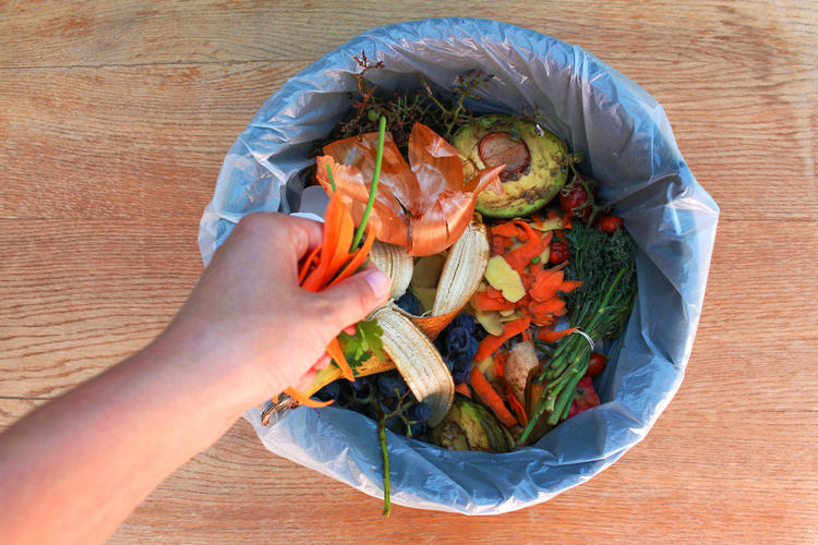 Do You Regularly Throw Away Waste Food?